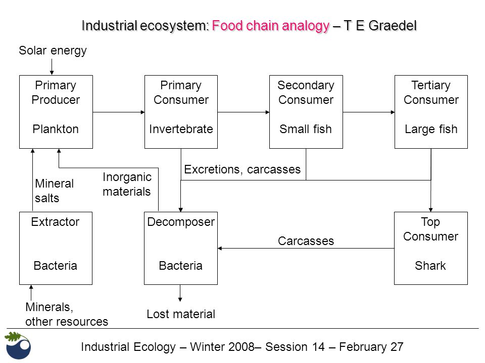 Industrial Ecology – Winter 2008– Session 14 – February 27 Industrial ecosystem: Food chain analogy – T E Graedel Primary Producer Plankton Primary Consumer Invertebrate Secondary Consumer Small fish Tertiary Consumer Large fish Solar energy Extractor Bacteria Decomposer Bacteria Top Consumer Shark Mineral salts Minerals, other resources Excretions, carcasses Inorganic materials Lost material Carcasses