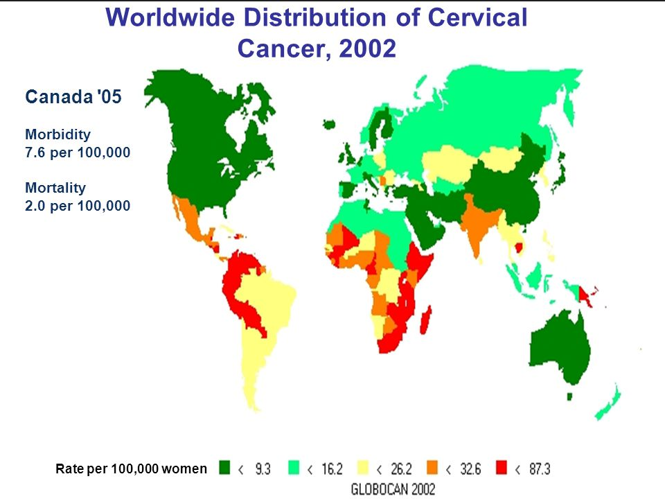 Worldwide Distribution of Cervical Cancer, 2002 Rate per 100,000 women Canada '05 Morbidity 7.6 per 100,000 Mortality 2.0 per 100,000
