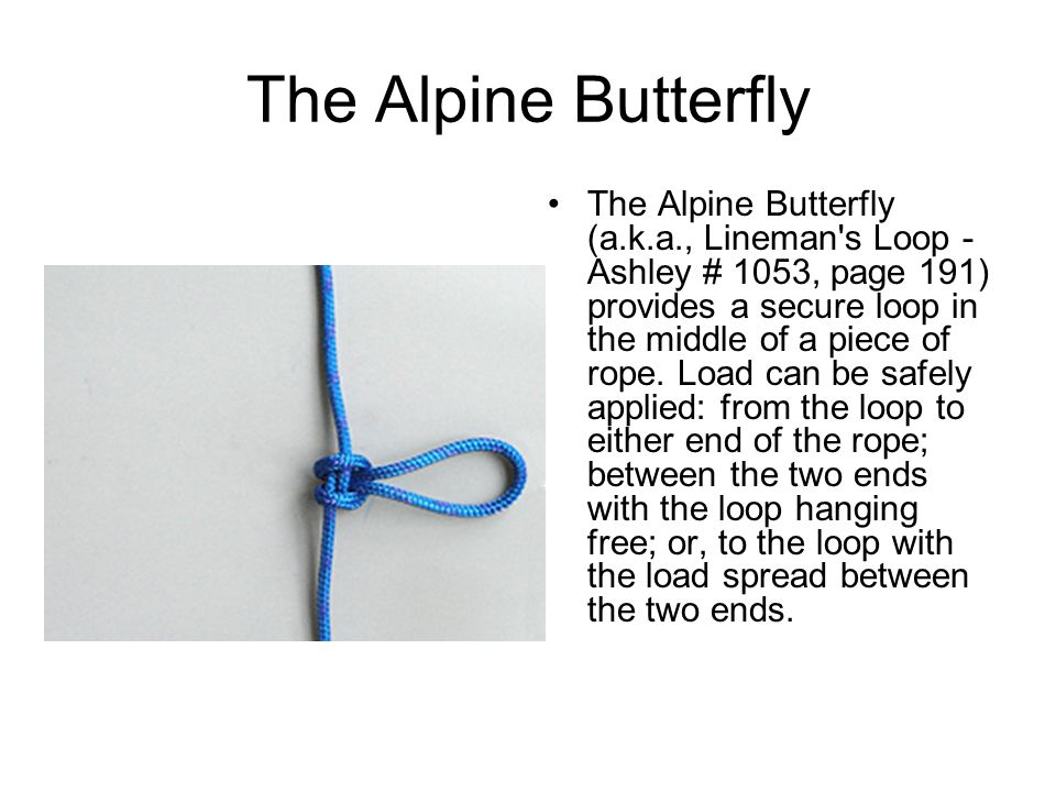 The Alpine Butterfly The Alpine Butterfly (a.k.a., Lineman s Loop - Ashley # 1053, page 191) provides a secure loop in the middle of a piece of rope.