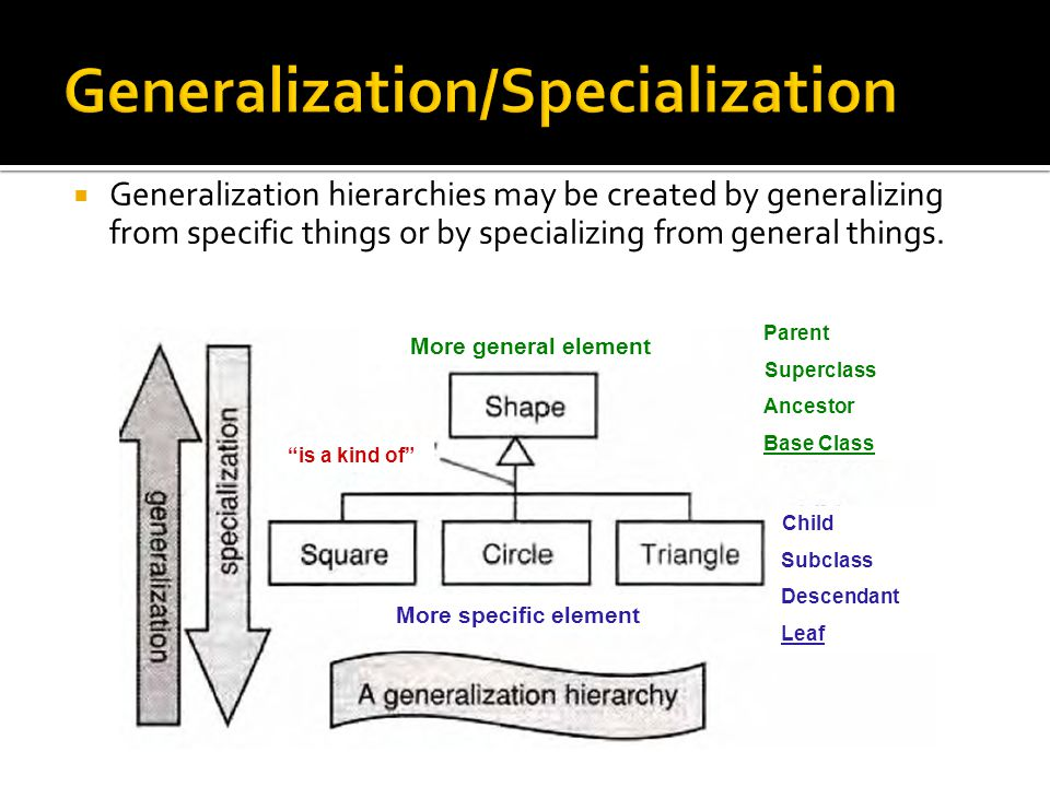 Generalization/Specialization  Generalization hierarchies may be created by generalizing from specific things or by specializing from general things.