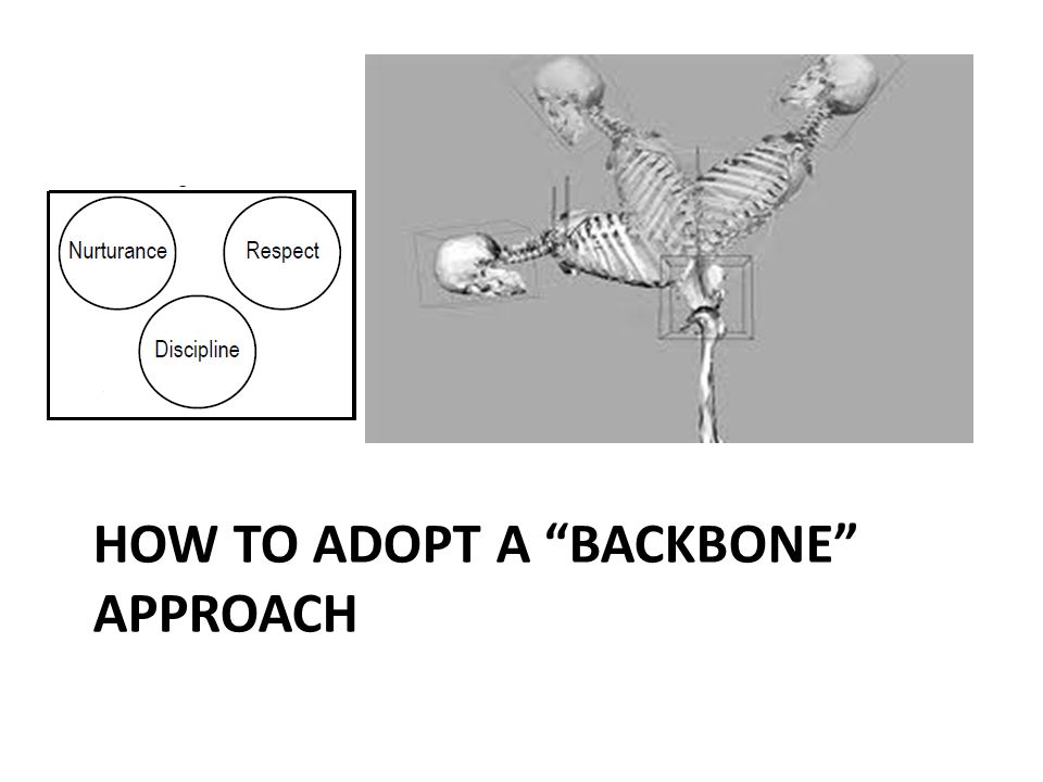 """HOW TO ADOPT A """"BACKBONE"""" APPROACH"""