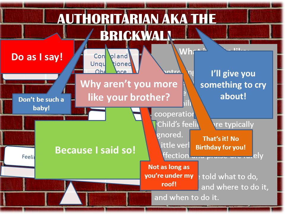 AUTHORITARIAN AKA THE BRICKWALL What it looks like: Controlling, bossy, rigid rules, all decisions are made for the child. may use physical punishment