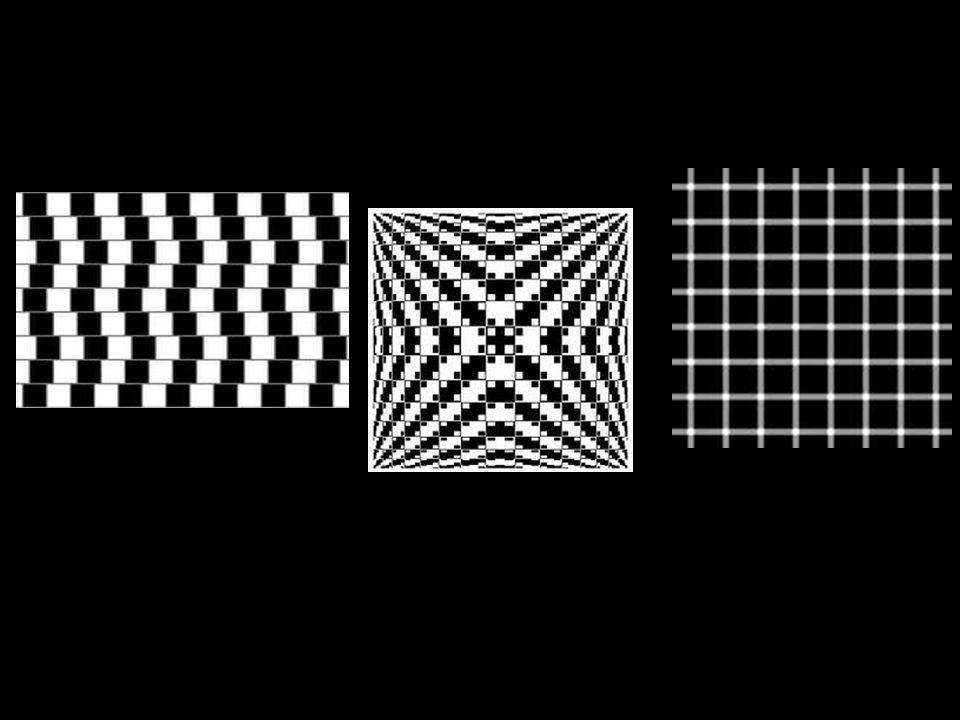 """OP-ART"" is art that creates an optical illusion. Some examples of optical illusions: What illusions have the artists created? How have they created t"