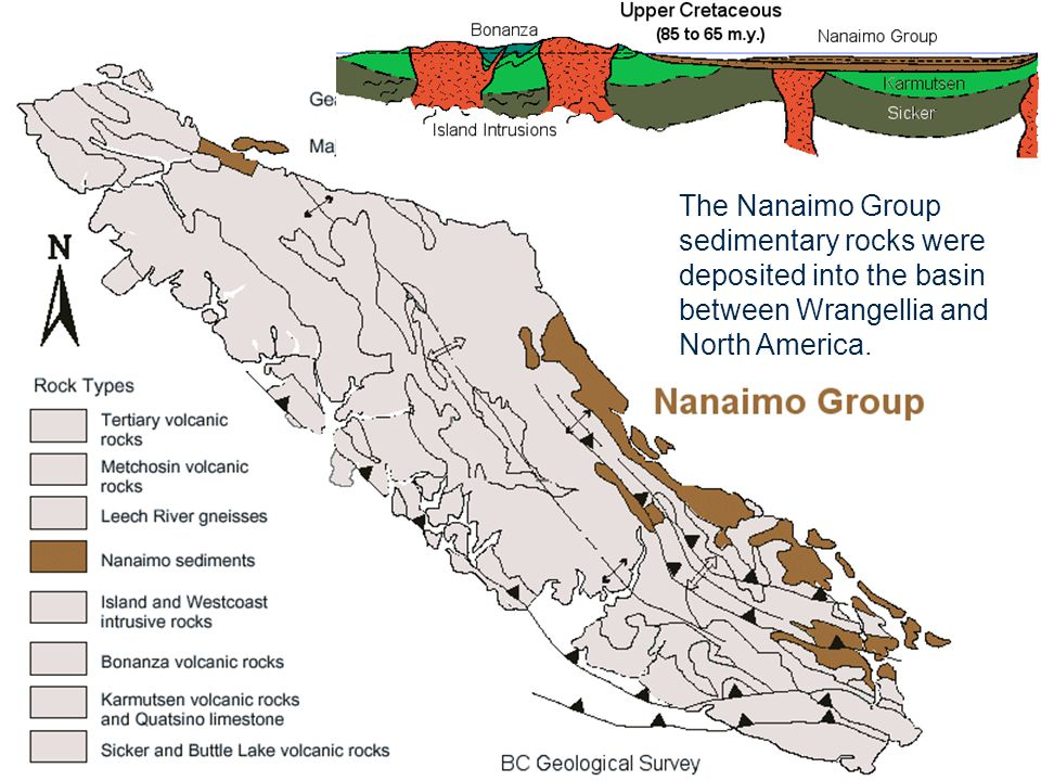 Nanaimo Group (65-85 m.y.) The Nanaimo Group sedimentary rocks were deposited into the basin between Wrangellia and North America.