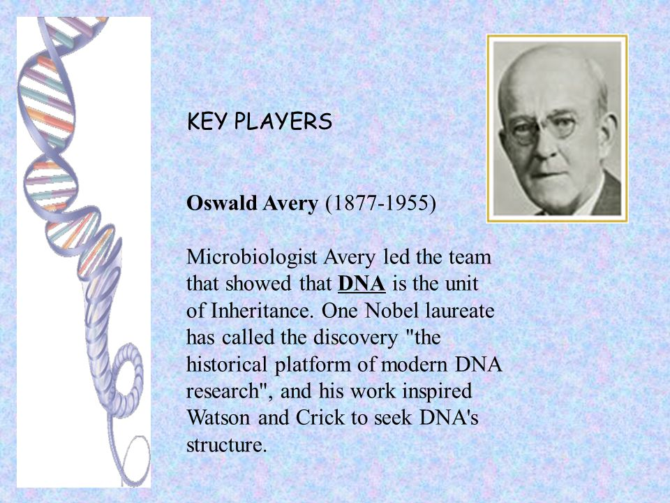 KEY PLAYERS Oswald Avery (1877-1955) Microbiologist Avery led the team that showed that DNA is the unit of Inheritance. One Nobel laureate has called