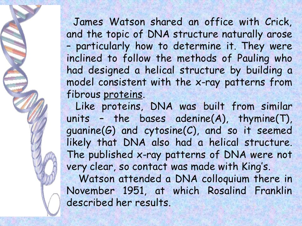 James Watson shared an office with Crick, and the topic of DNA structure naturally arose – particularly how to determine it. They were inclined to fol