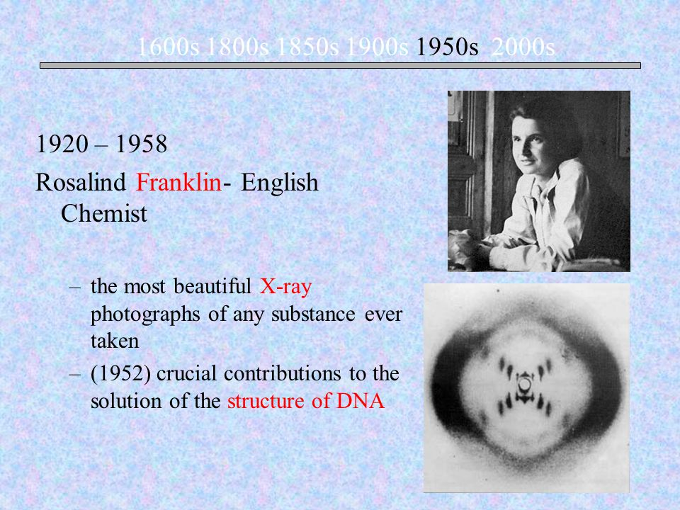 1920 – 1958 Rosalind Franklin- English Chemist –the most beautiful X-ray photographs of any substance ever taken –(1952) crucial contributions to the