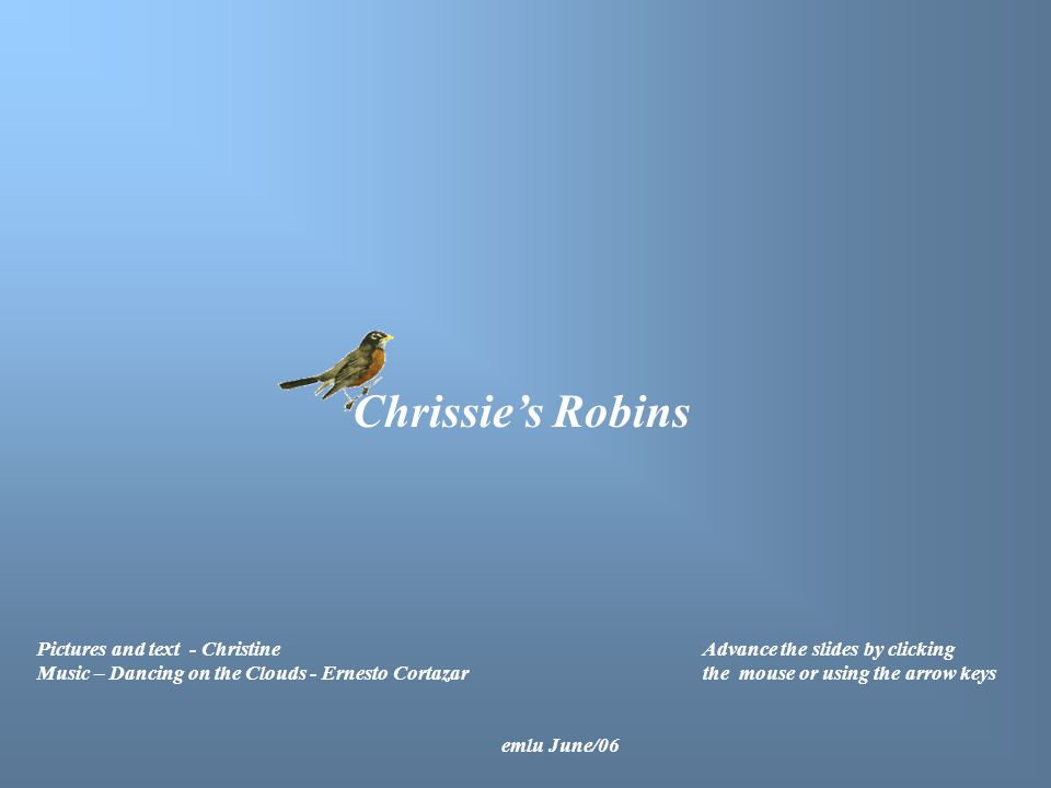 Chrissie's Robins Pictures and text - Christine Music – Dancing on the Clouds - Ernesto Cortazar Advance the slides by clicking the mouse or using the arrow keys emlu June/06