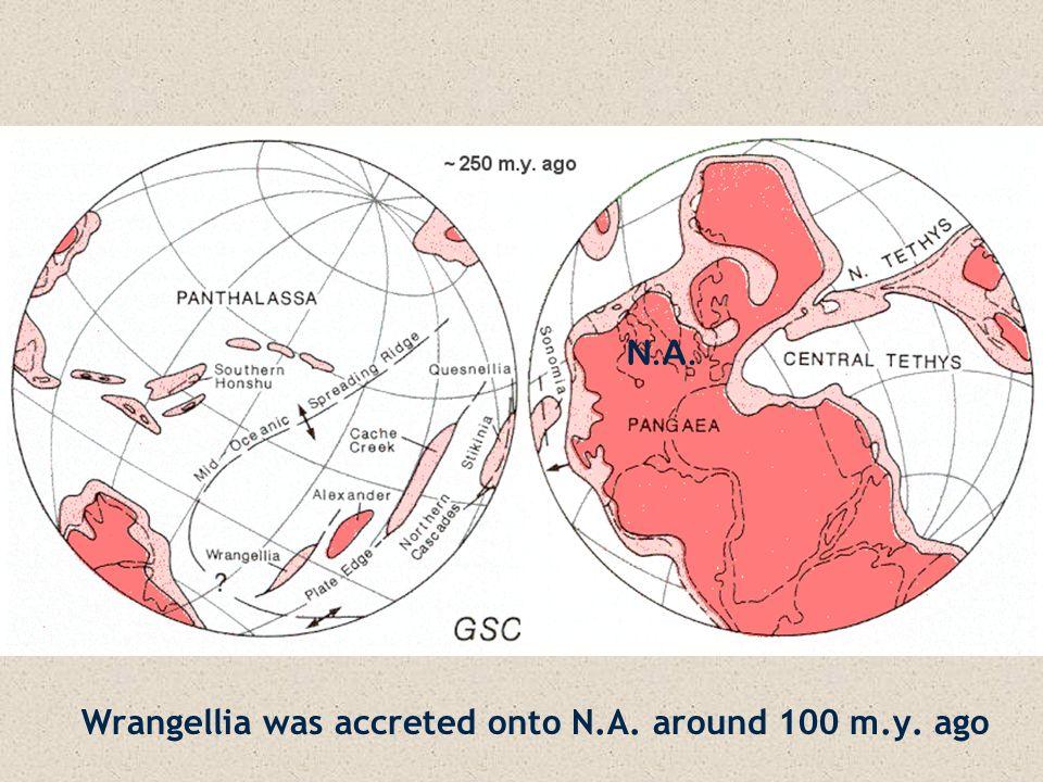 Wrangellia was accreted onto N.A. around 100 m.y. ago N.A.