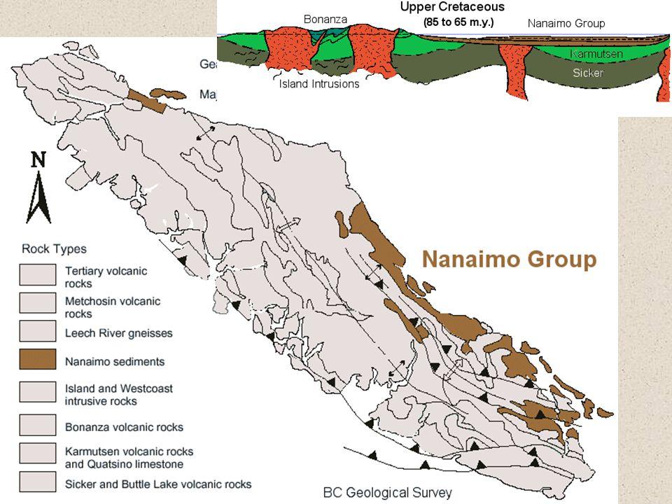 Nanaimo Group (65-85 m.y.)