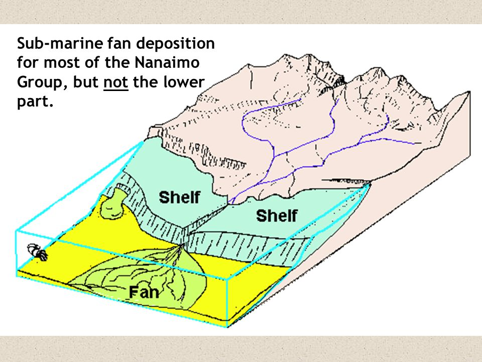 Sub-marine fan deposition for most of the Nanaimo Group, but not the lower part.