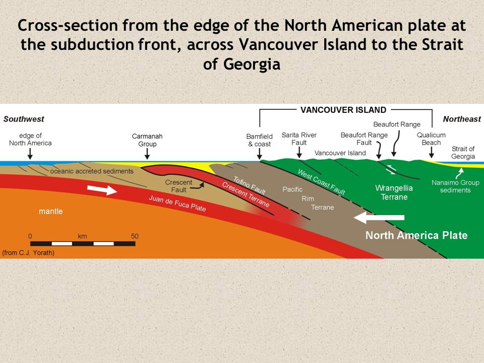 Cross-section from the edge of the North American plate at the subduction front, across Vancouver Island to the Strait of Georgia