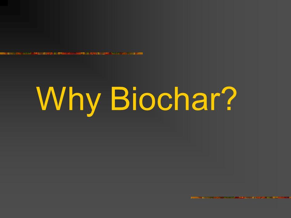 Why Biochar?