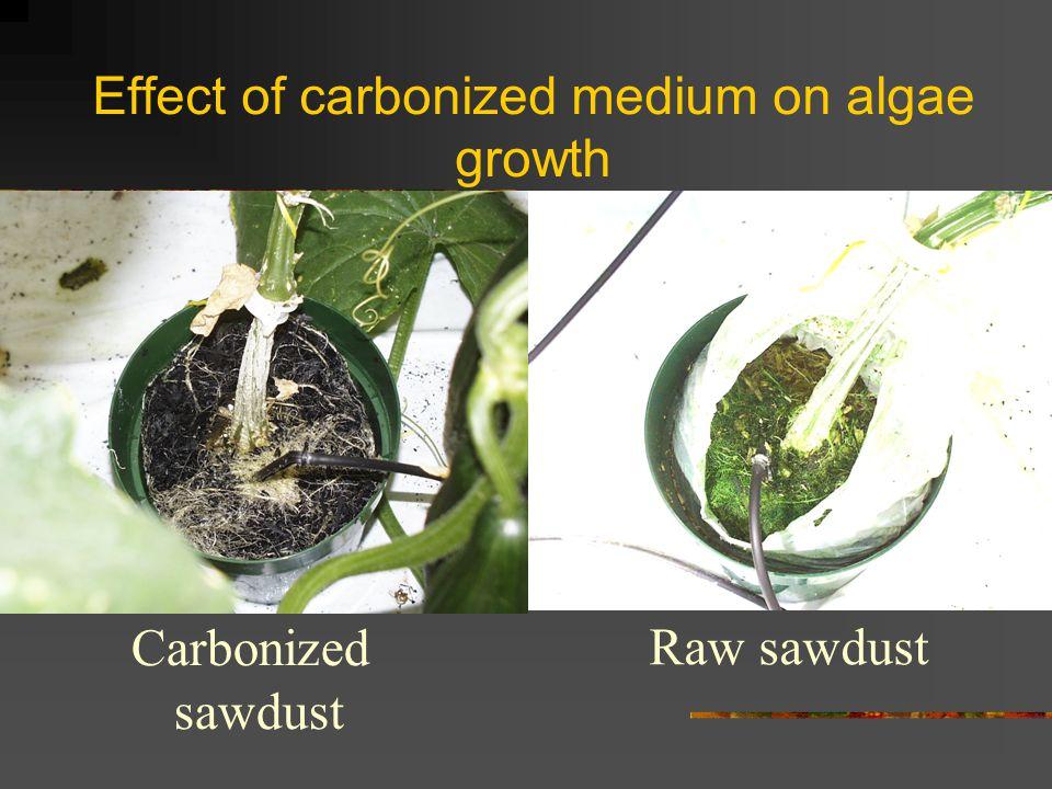 Effect of carbonized medium on algae growth Carbonized sawdust Raw sawdust