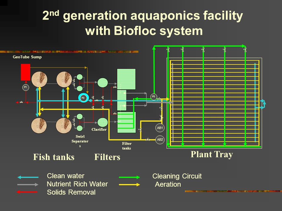 GeoTube Sump Filter tanks Clarifier Swirl Separator s P1 2 nd generation aquaponics facility with Biofloc system Fish tanks Plant Tray AB1 AB2 Filters