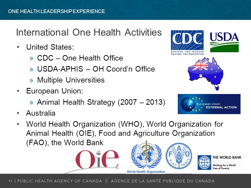 International One Health Activities United States: »CDC – One Health Office »USDA-APHIS – OH Coord'n Office »Multiple Universities European Union: »An
