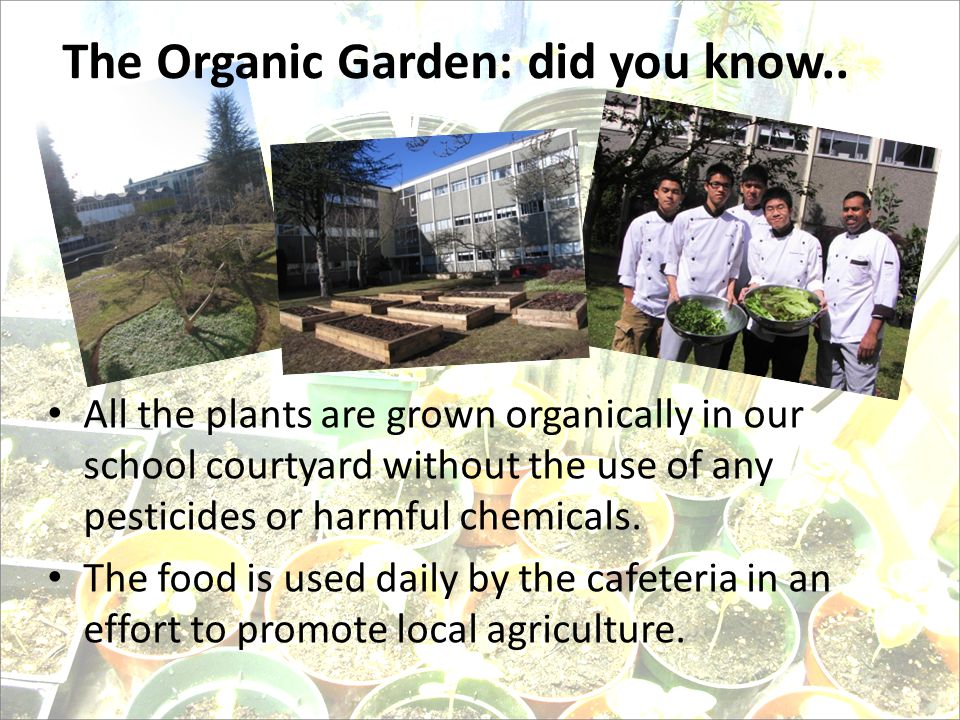 The Organic Garden: did you know..
