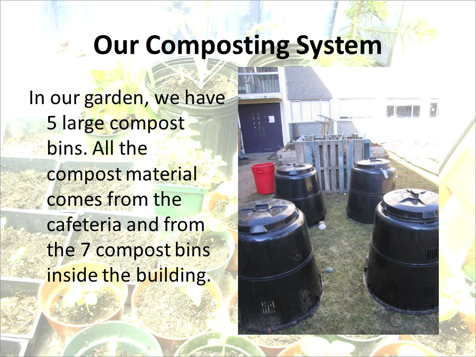 Our Composting System In our garden, we have 5 large compost bins.
