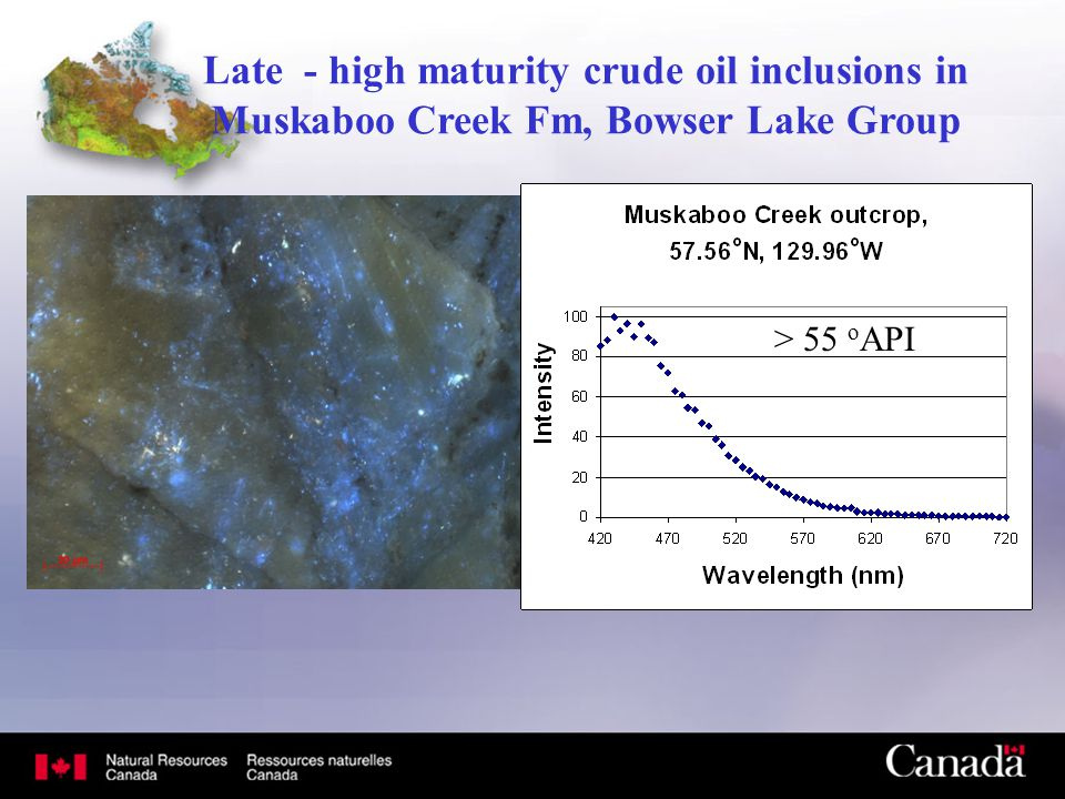 Late - high maturity crude oil inclusions in Muskaboo Creek Fm, Bowser Lake Group > 55 o API