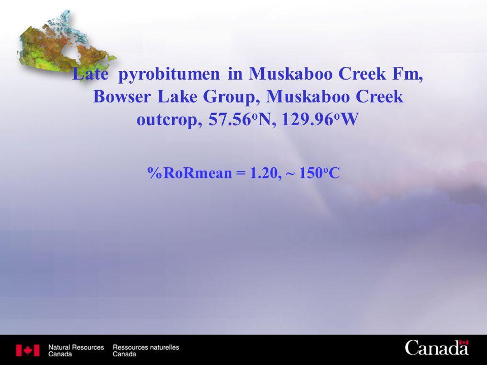 Late pyrobitumen in Muskaboo Creek Fm, Bowser Lake Group, Muskaboo Creek outcrop, 57.56 o N, 129.96 o W %RoRmean = 1.20, ~ 150 o C