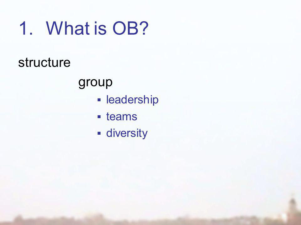 1.What is OB structure group  leadership  teams  diversity