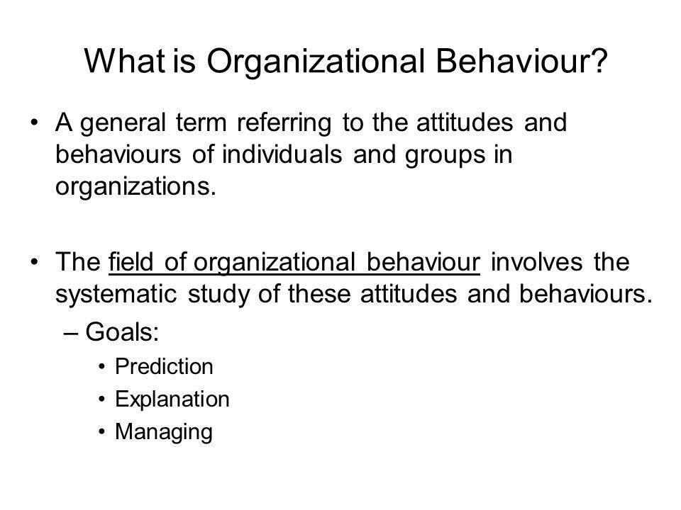 What is Organizational Behaviour.