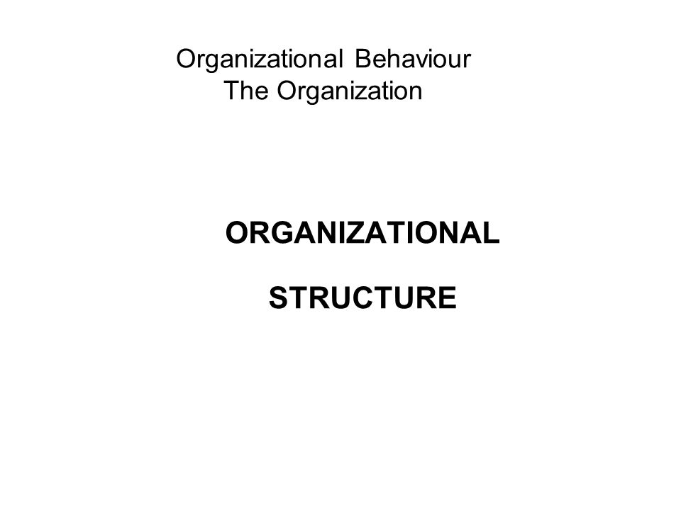 Organizational Behaviour The Organization ORGANIZATIONAL STRUCTURE