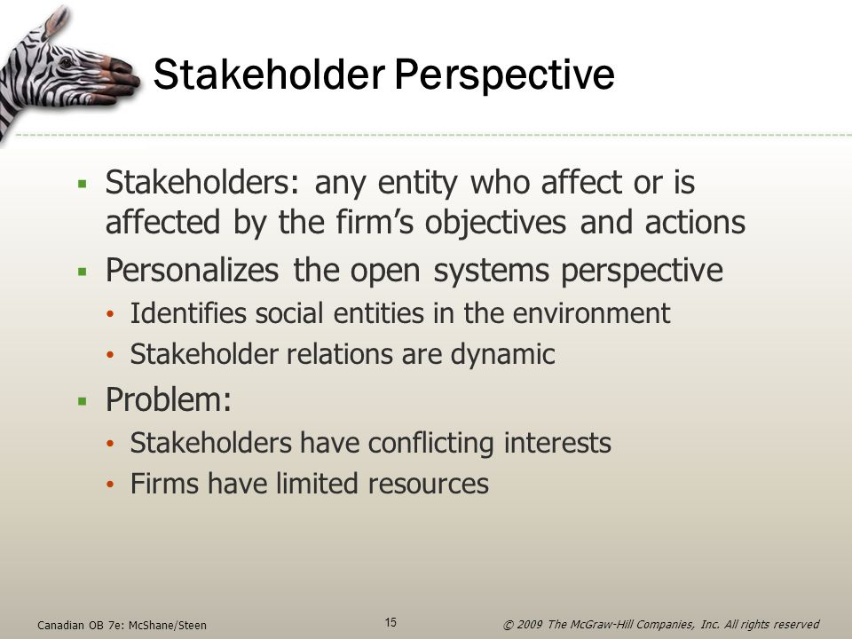 Stakeholder Perspective  Stakeholders: any entity who affect or is affected by the firm's objectives and actions  Personalizes the open systems pers