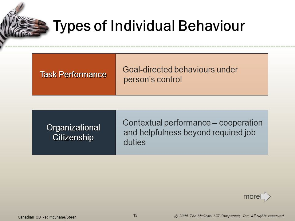 Types of Individual Behaviour Organizational Citizenship Contextual performance – cooperation and helpfulness beyond required job duties Task Performa