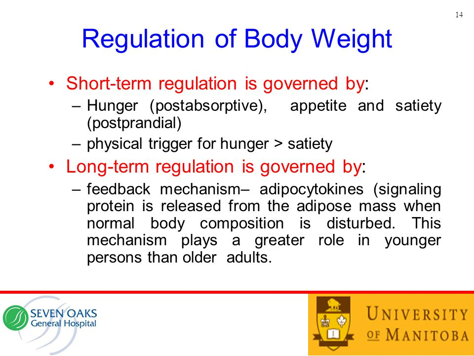 Regulation of Body Weight Short-term regulation is governed by: –Hunger (postabsorptive), appetite and satiety (postprandial) –physical trigger for hu