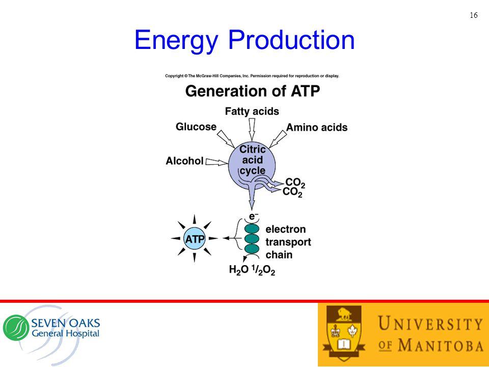 Energy Production 16