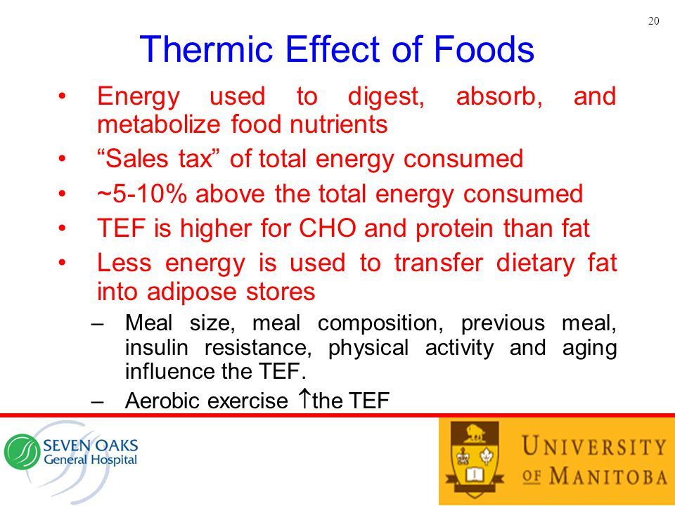"""Thermic Effect of Foods Energy used to digest, absorb, and metabolize food nutrients """"Sales tax"""" of total energy consumed ~5-10% above the total energ"""