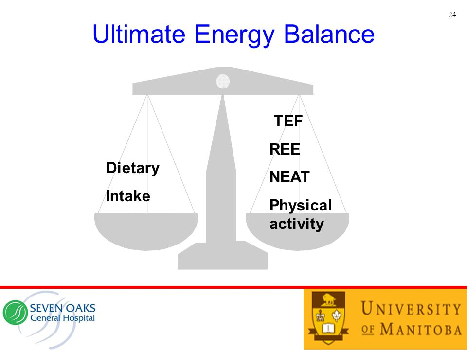 Ultimate Energy Balance 24 TEF REE NEAT Physical activity Dietary Intake
