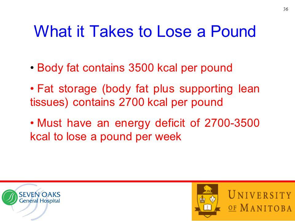 What it Takes to Lose a Pound 36 Body fat contains 3500 kcal per pound Fat storage (body fat plus supporting lean tissues) contains 2700 kcal per poun
