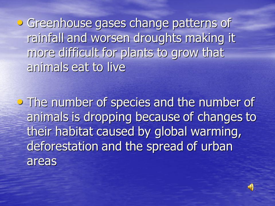 Greenhouse gases change patterns of rainfall and worsen droughts making it more difficult for plants to grow that animals eat to live Greenhouse gases change patterns of rainfall and worsen droughts making it more difficult for plants to grow that animals eat to live The number of species and the number of animals is dropping because of changes to their habitat caused by global warming, deforestation and the spread of urban areas The number of species and the number of animals is dropping because of changes to their habitat caused by global warming, deforestation and the spread of urban areas