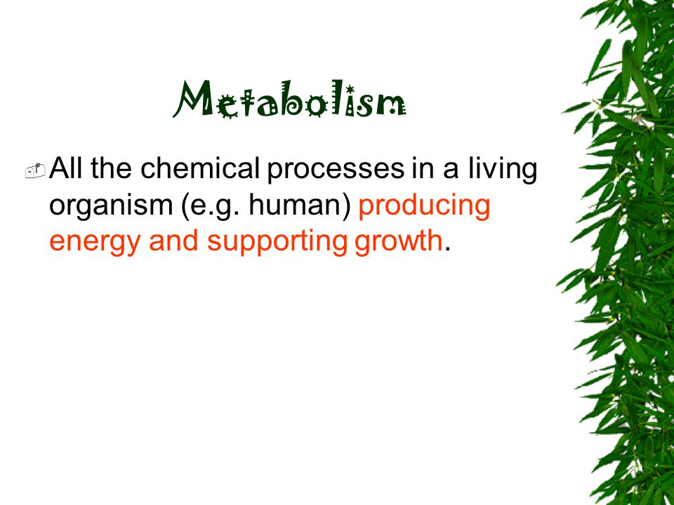 Metabolism  All the chemical processes in a living organism (e.g. human) producing energy and supporting growth.