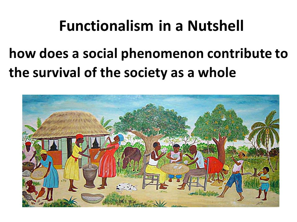 Functionalism in a Nutshell how does a social phenomenon contribute to the survival of the society as a whole