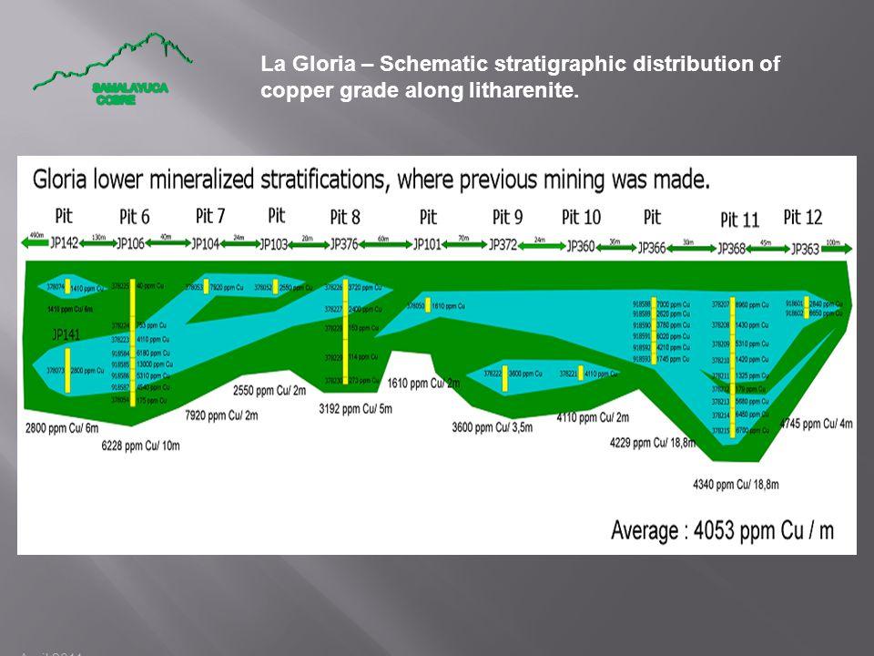 April 2011 La Gloria – Schematic stratigraphic distribution of copper grade along litharenite.