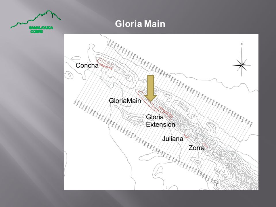Gloria Main