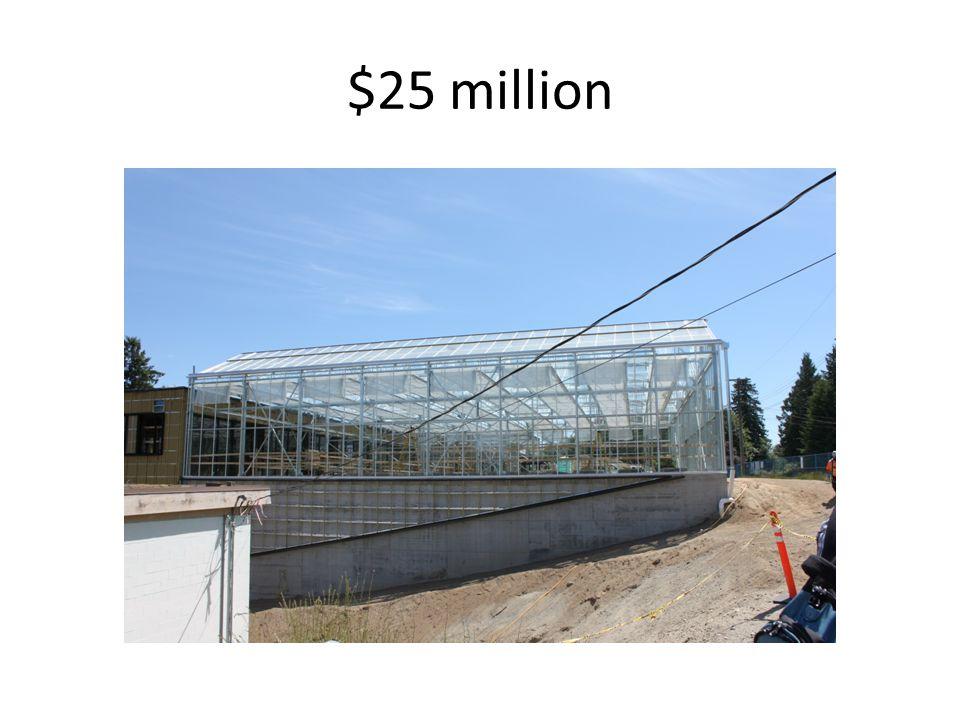 $25 million