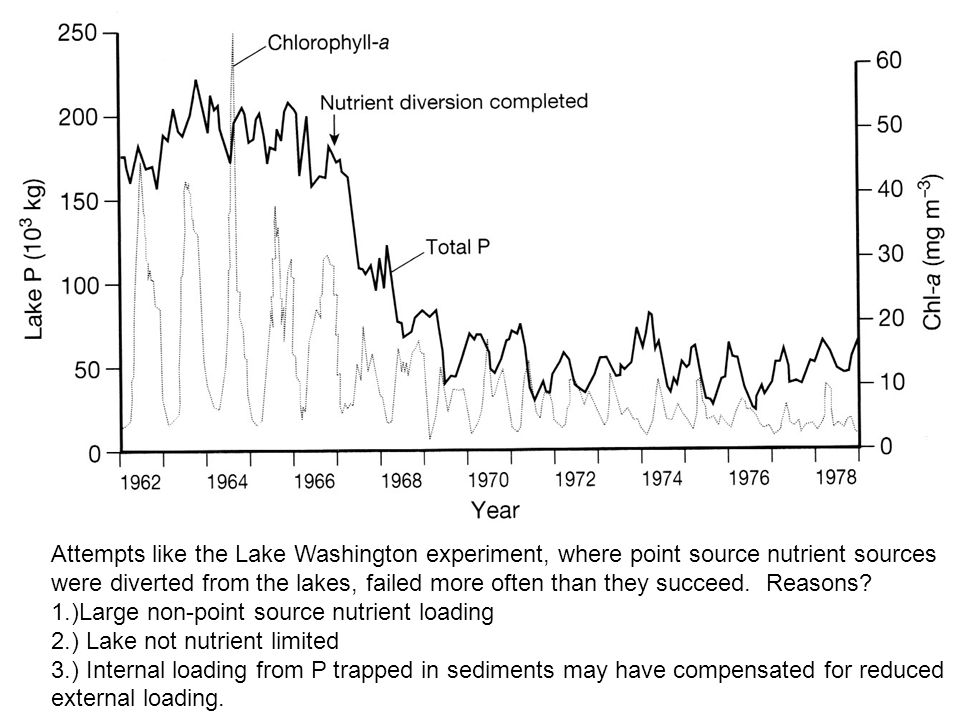 Attempts like the Lake Washington experiment, where point source nutrient sources were diverted from the lakes, failed more often than they succeed. R