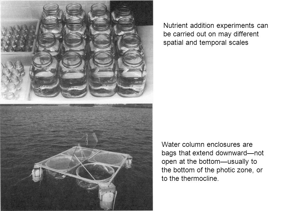 Nutrient addition experiments can be carried out on may different spatial and temporal scales Water column enclosures are bags that extend downward—not open at the bottom—usually to the bottom of the photic zone, or to the thermocline.