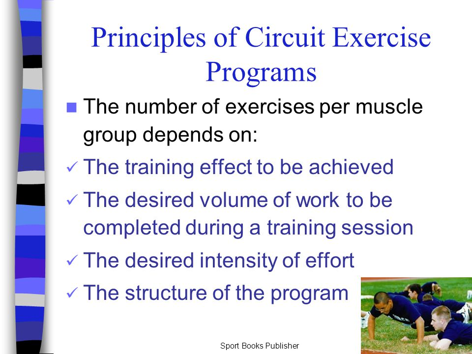 Sport Books Publisher35 Principles of Circuit Exercise Programs The number of exercises per muscle group depends on: The training effect to be achieve