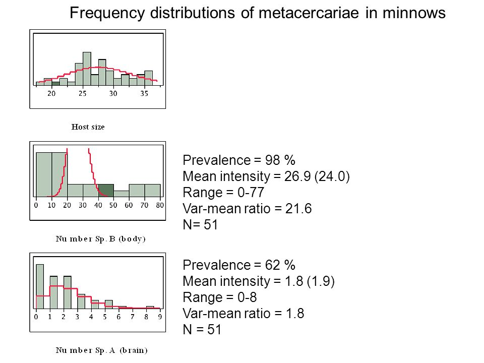 Frequency distributions of metacercariae in minnows Prevalence = 62 % Mean intensity = 1.8 (1.9) Range = 0-8 Var-mean ratio = 1.8 N = 51 Prevalence =