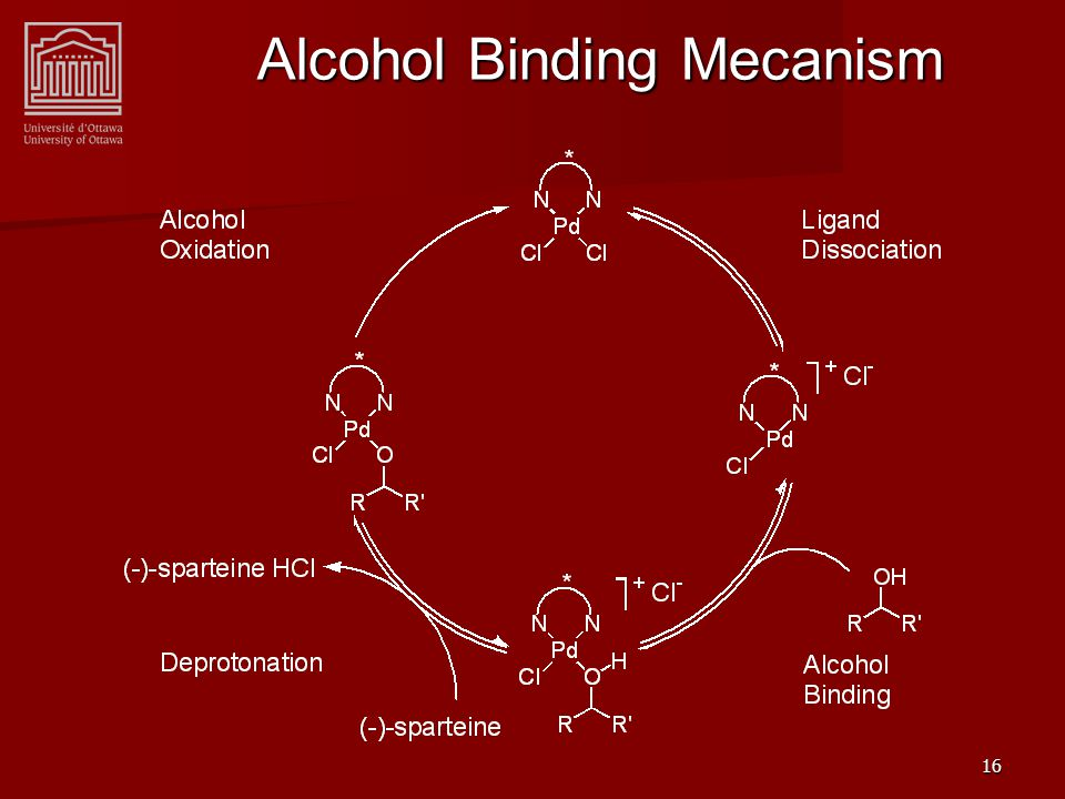 16 Alcohol Binding Mecanism