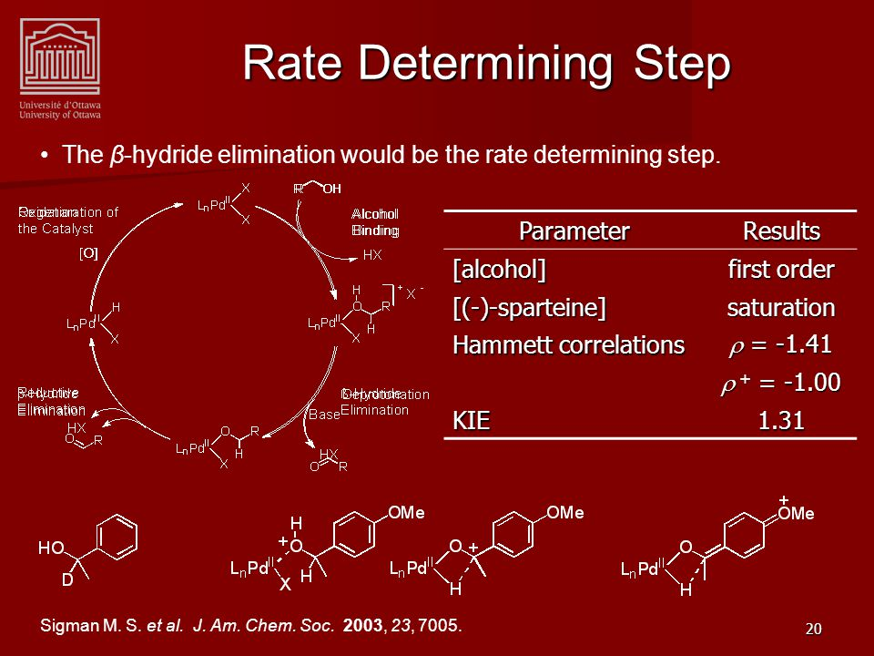 20 Rate Determining Step ParameterResults[alcohol] first order [(-)-sparteine]saturation Hammett correlations  = -1.41  + = -1.00 KIE1.31 The β-hydride elimination would be the rate determining step.