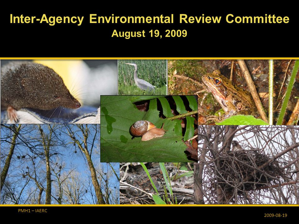 PMH1 – IAERC  Continual involvement with affected municipalities regarding designs, permit applications, and possible environmental issues  Since the last IAERC meeting…  City of Burnaby: Meeting to discuss compensation habitats and drainage External Communications 2009-08-19