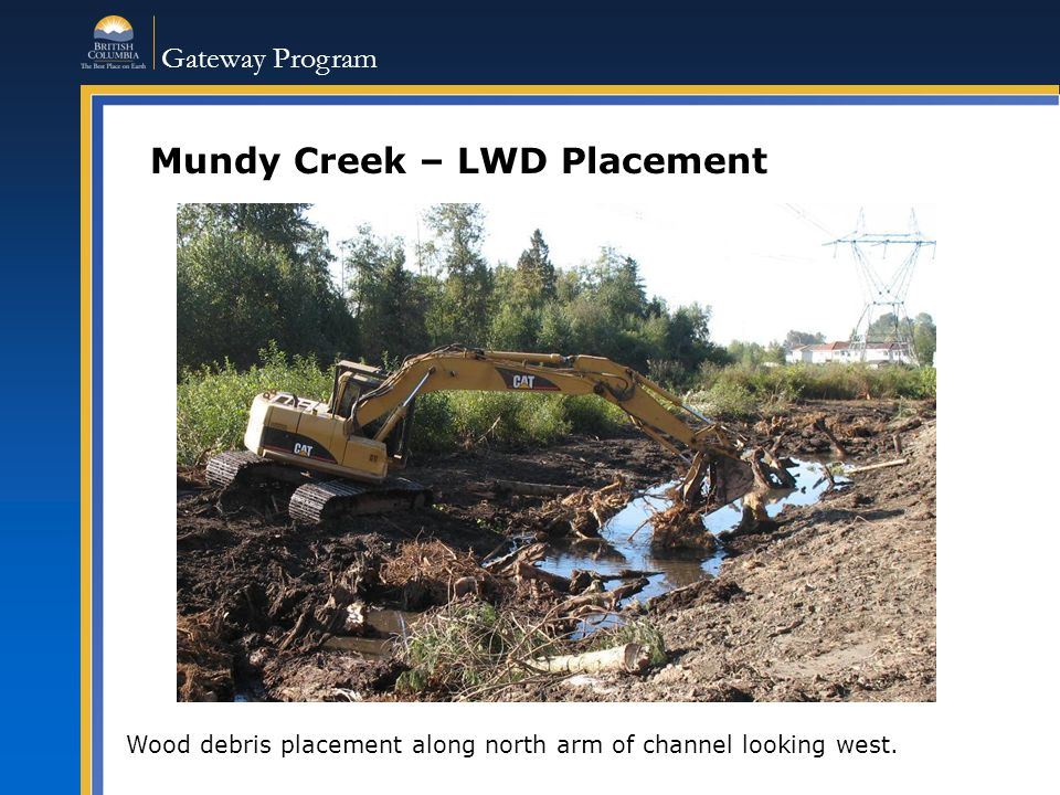 Gateway Program Mundy Creek – LWD Placement Wood debris placement along north arm of channel looking west.