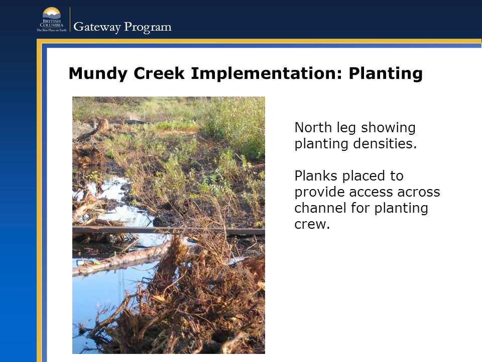 Gateway Program Mundy Creek Implementation: Planting North leg showing planting densities.