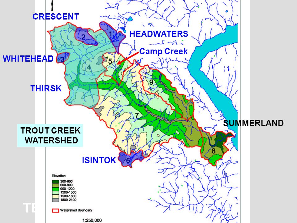 TECHNICAL APPROACH HEADWATERS CRESCENT WHITEHEAD ISINTOK THIRSK TROUT CREEK WATERSHED SUMMERLAND Camp Creek